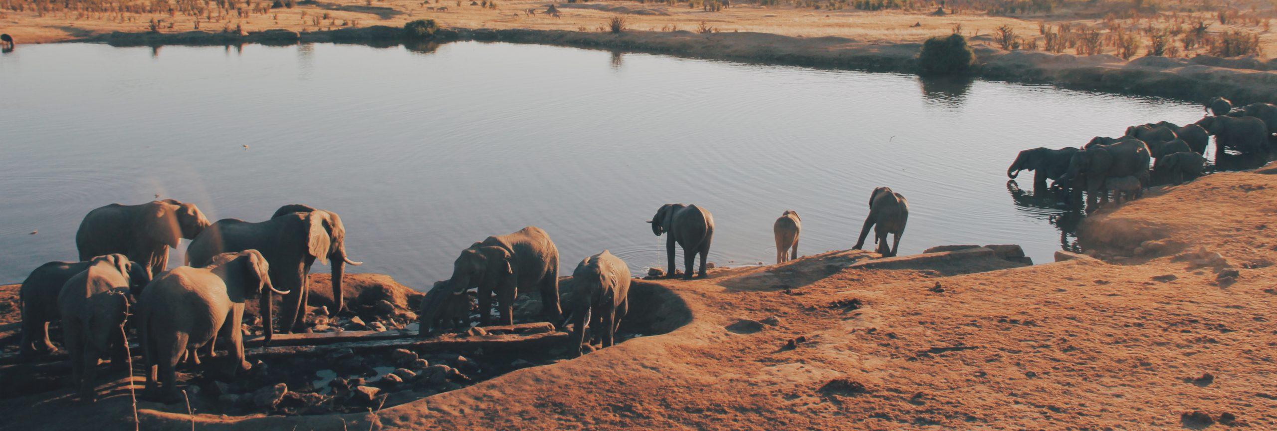 Zimbabwe nationaal park - De Planeet Reizen